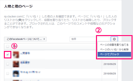 check-facebook-page-like-users04