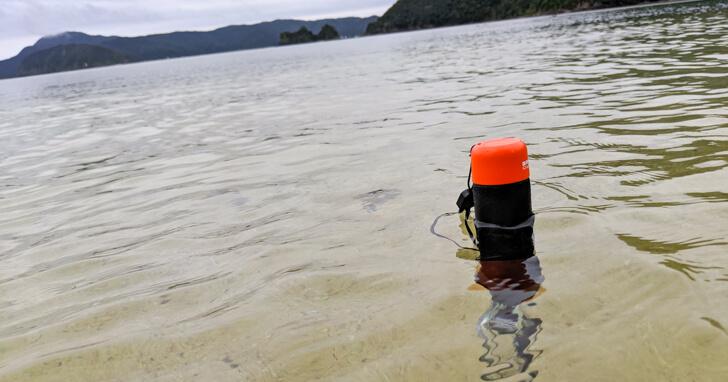 水に浮くハンドラー