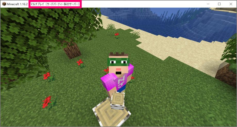 サーバー上の Minecraft に接続