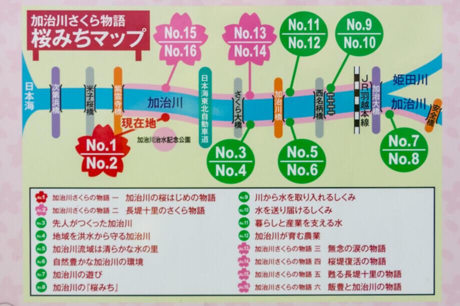 加治川堤 桜みちマップ