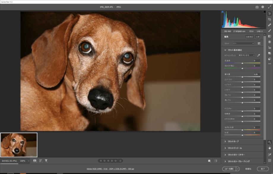 Camera Raw で開いた JPEG ファイル