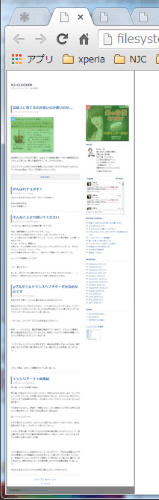 full-page-screen-capture-chrome-extension03