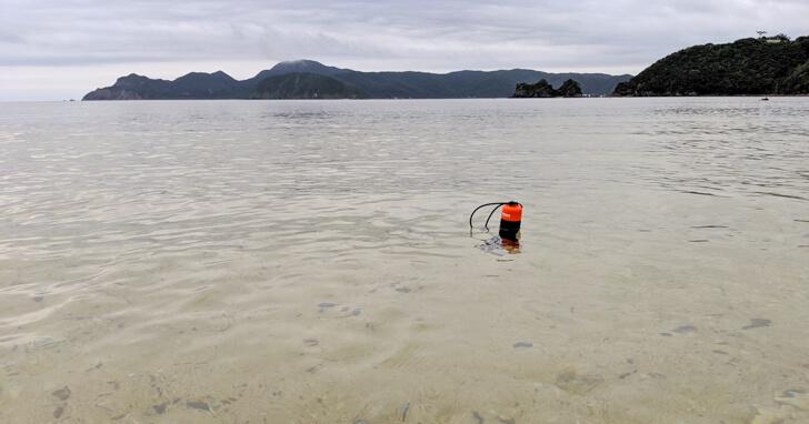 水にプカプカ浮くハンドラー